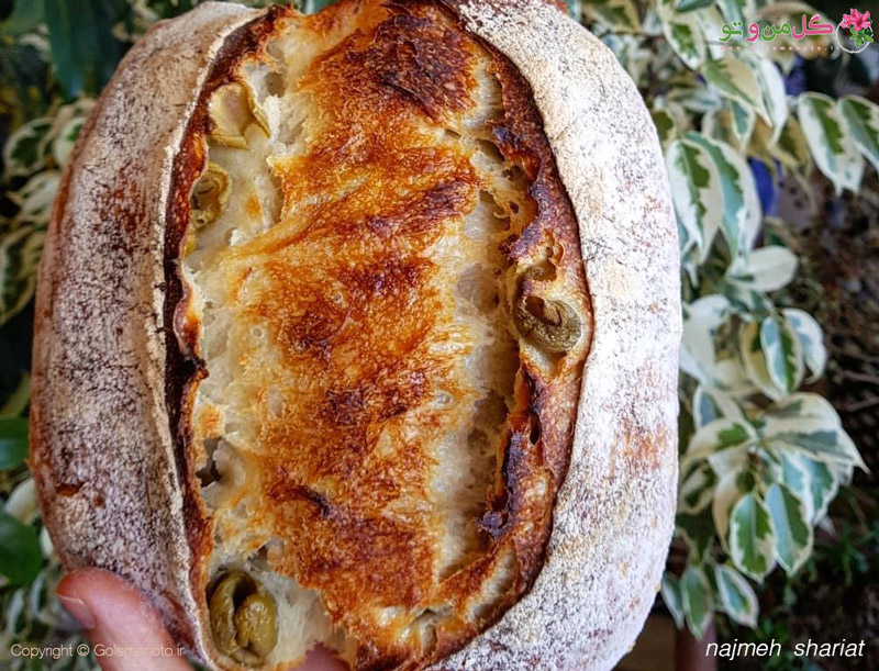 golemanoto 3612363834 طرز تهیه نان زیتون با خمیر ترش فوق العاده