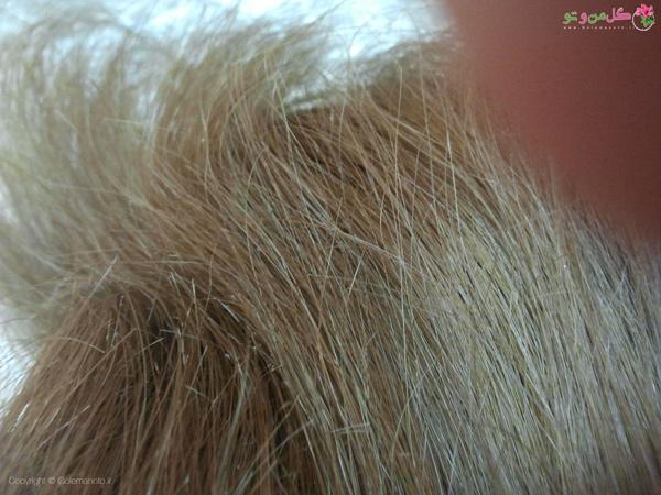 نکاتی برای وزی موی سر - موهای وز