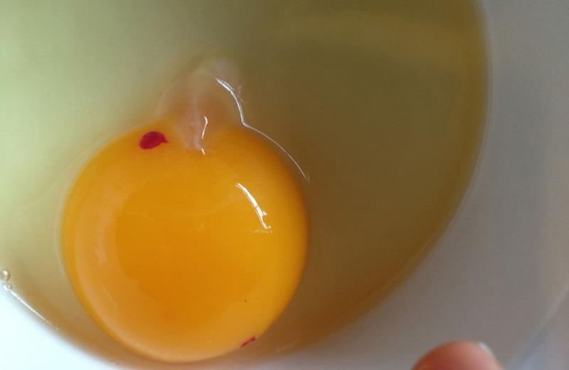 وجود لکه خون در تخم مرغ