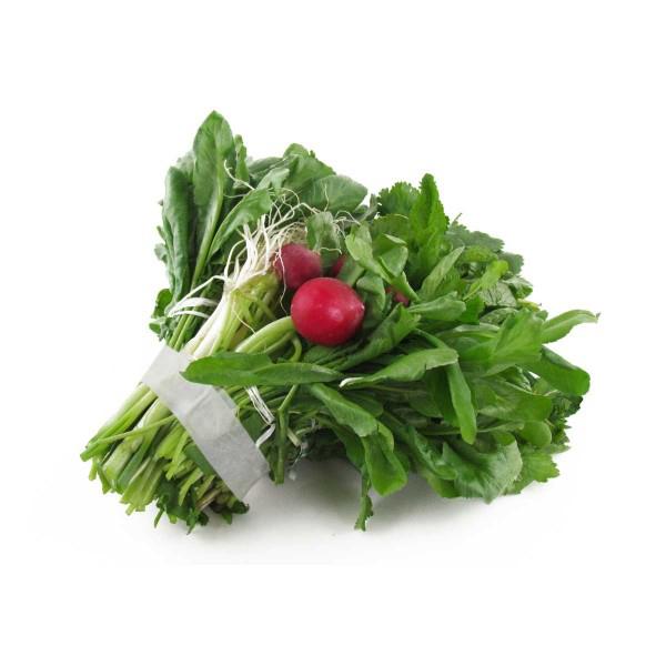 13 2 نحوه نگهداری صحیح سبزی خوردن