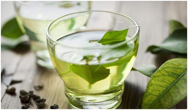 دمنوش های مضر برای دوران بارداری: چای سبز