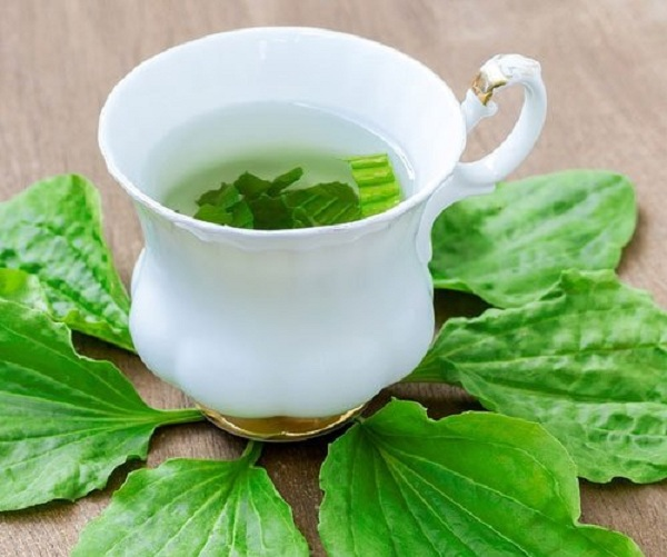 چای بارهنگ