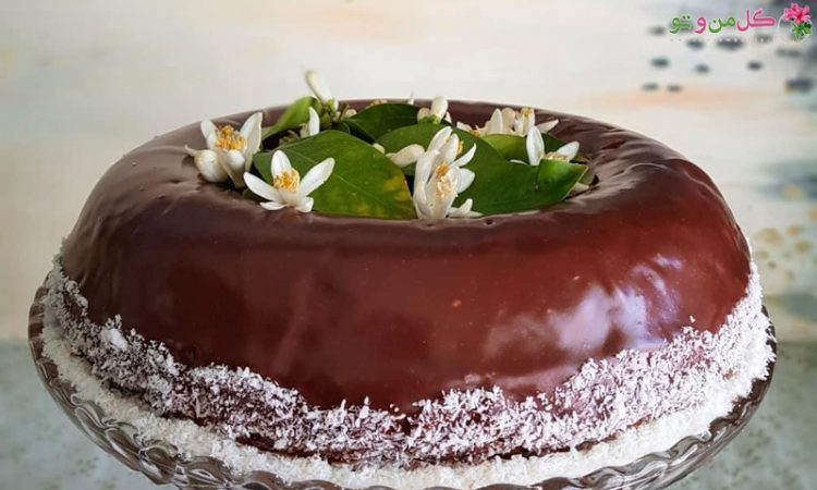 طرز تهیه کیک لمینگتون