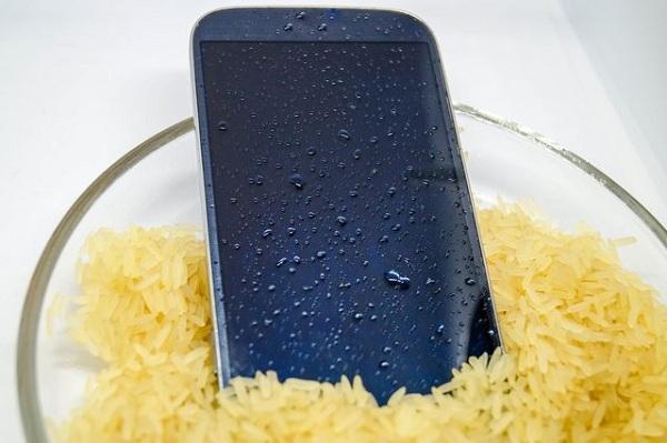 محافظت از گوشی های هوشمند با استفاده از برنج