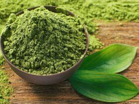 خواص چای ماچا برای بدن: