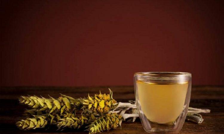خواص چای کوهی برای بدن:
