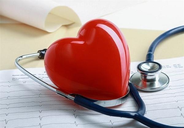 فواید و خواص برگ بو: حفظ سلامت قلب