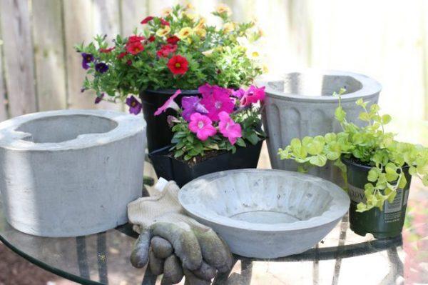 کاشتن گلهای تازه