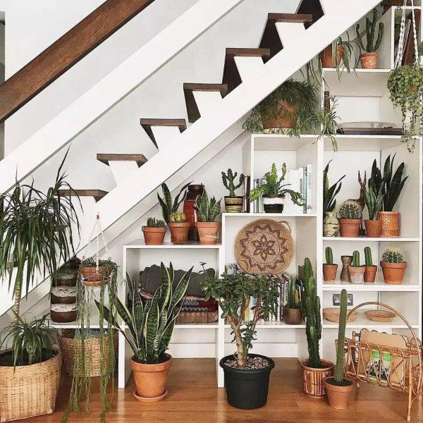تبدیل زیر پله به گلخانه