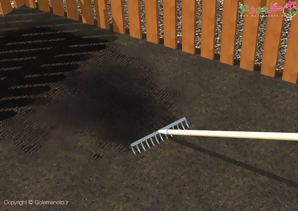 کاشت گشنیز در باغچه - آماده سازی محل کاشت