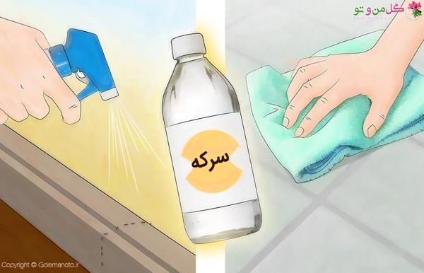 استفاده از سرکه برای از بین بردن مورچه
