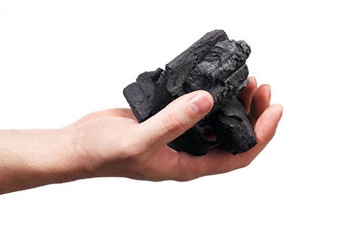 فواید زغال برای گیاهان