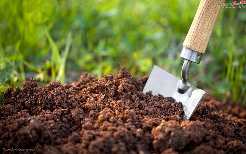 خاک مناسب گیاهان آپارتمانی