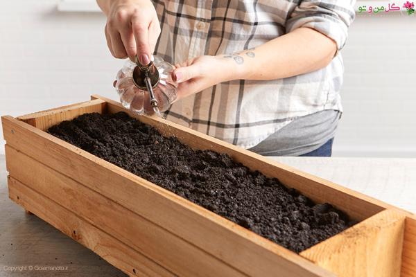 کاشت قارچ در گلدان - آبیاری خاک