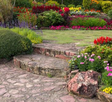 گلهای خوشبو مناسب حیاط و بالکن اپارتمانی