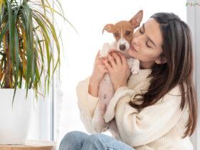 گیاهان مضر برای حیوانات