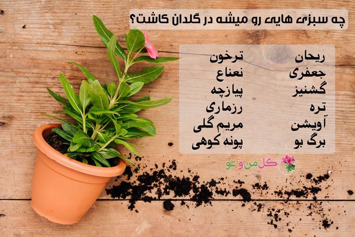 انواع سبزی - کاشت سبزی در گلدان