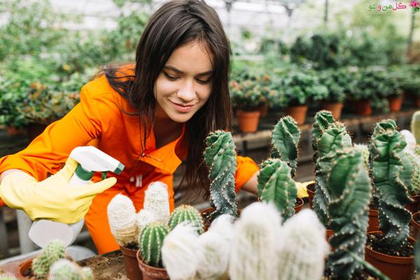آبیاری متناسب با نوع گیاه