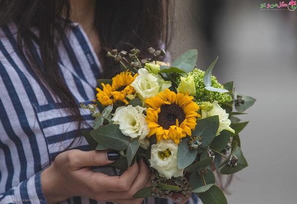 گل آفتابگردان گل مناسب هدیه برای خانمها