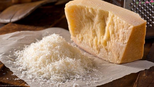 انواع پنیر - پارمزان