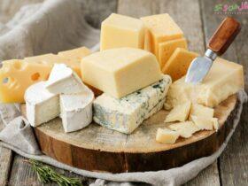 معرفی انواع پنیرها