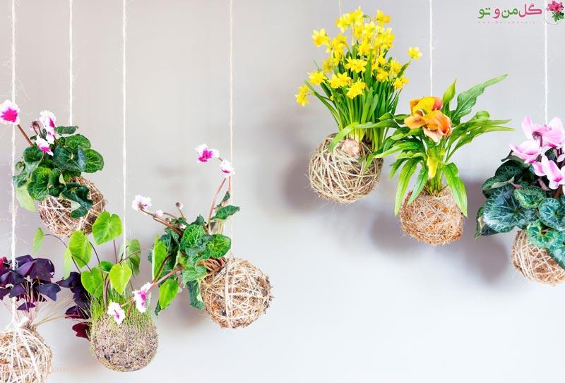 نحوه ساخت کوکداما در خانه