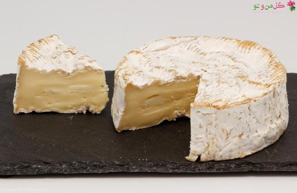 Camembert- Types of cheese