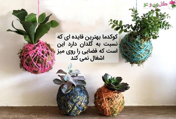 مزیت کوکداما نسبت به گلدان