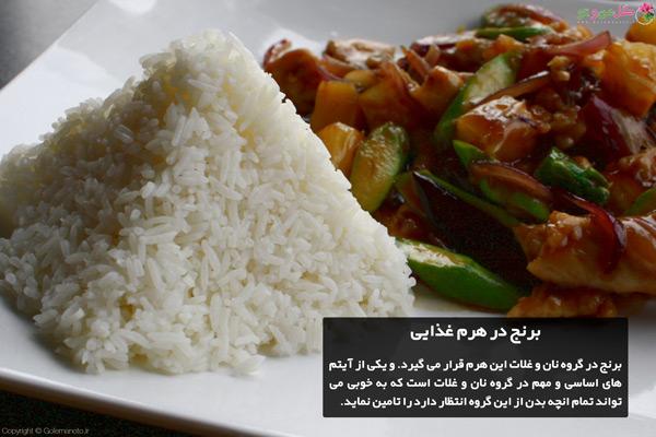 برنج در هرم غذایی