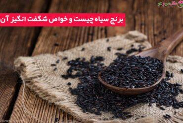 خواص برنج سیاه برای سلامتی