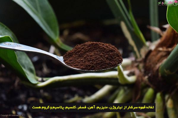 عناصر موجود در تفاله قهوه