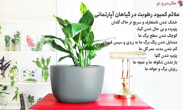 علائم کمبود رطوبت در گیاهان
