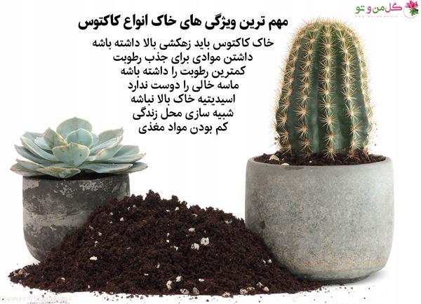 ویژگی های اصلی خاک کاکتوس