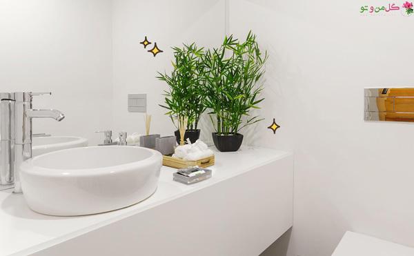 بامبو مناسب سرویس بهداشتی و حمام